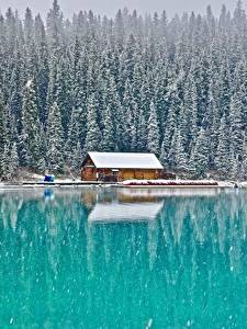 Images Building Forests Lake Canada Parks Snow Banff Lake Louise, Alberta Nature