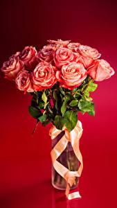 Bilder Sträuße Rosen Band Rosa Farbe Roter Hintergrund