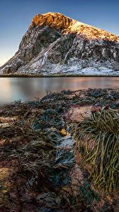 Bilder Lofoten Norwegen Landschaftsfotografie Berg Küste Schnee Kvalvika Beach Natur
