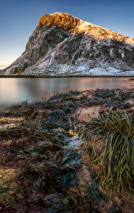 Bilder Lofoten Norwegen Landschaftsfotografie Gebirge Küste Schnee Kvalvika Beach Natur