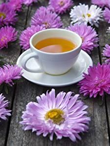 Hintergrundbilder Tee Astern Tasse Blumen