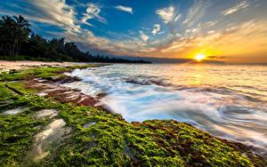 Bilder Tropen Sonnenaufgänge und Sonnenuntergänge Küste Landschaftsfotografie Himmel Wasserwelle Ozean USA Hawaii Sonne