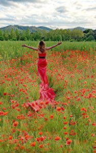 Wallpapers Fields Poppies Gown Flowers Girls Nature