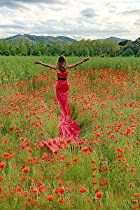 Wallpapers Fields Poppies Frock Flowers Girls Nature