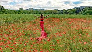 Fotos Felder Mohn Kleid Blumen Mädchens Natur