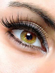 Bilder Augen Großansicht Wimper Makro junge Frauen