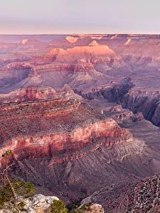 Hintergrundbilder Grand Canyon Park Vereinigte Staaten Park Felsen