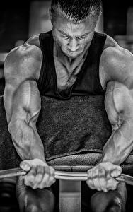 Bilder Mann Bodybuilding Hand Hantelstange Muskeln Körperliche Aktivität sportliches