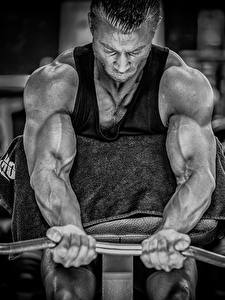 Bilder Mann Bodybuilding Hand Hantelstange Muskeln Körperliche Aktivität Sport