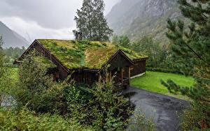 Bilder Norwegen Gebäude Bäume Dach Laubmoose Osa Hordaland