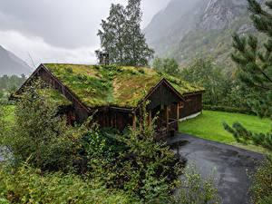 Bilder Norwegen Gebäude Bäume Dach Laubmoose Osa Hordaland Städte