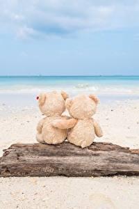Bilder Meer Teddy Liebe Strand Umarmen