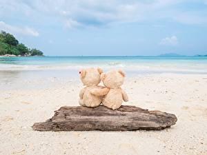 Bilder Meer Teddy Liebe Strand Umarmen Natur