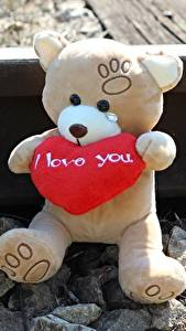 Hintergrundbilder Teddy Liebe Steine Herz Schienen Sitzend