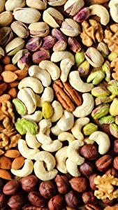 Hintergrundbilder Nussfrüchte Textur Haselnuss Lebensmittel