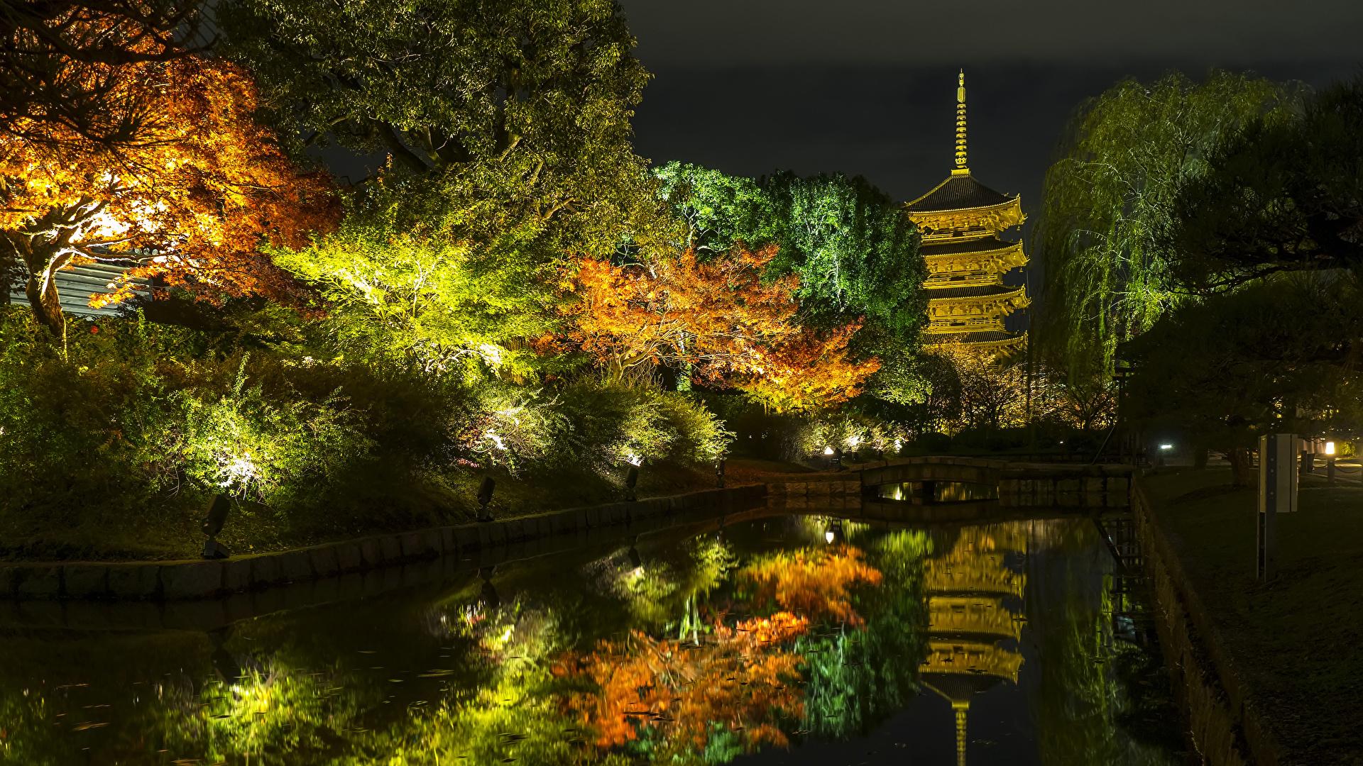 1920x1080、日本、京都市、秋、公園、池、木、夜、街灯、自然