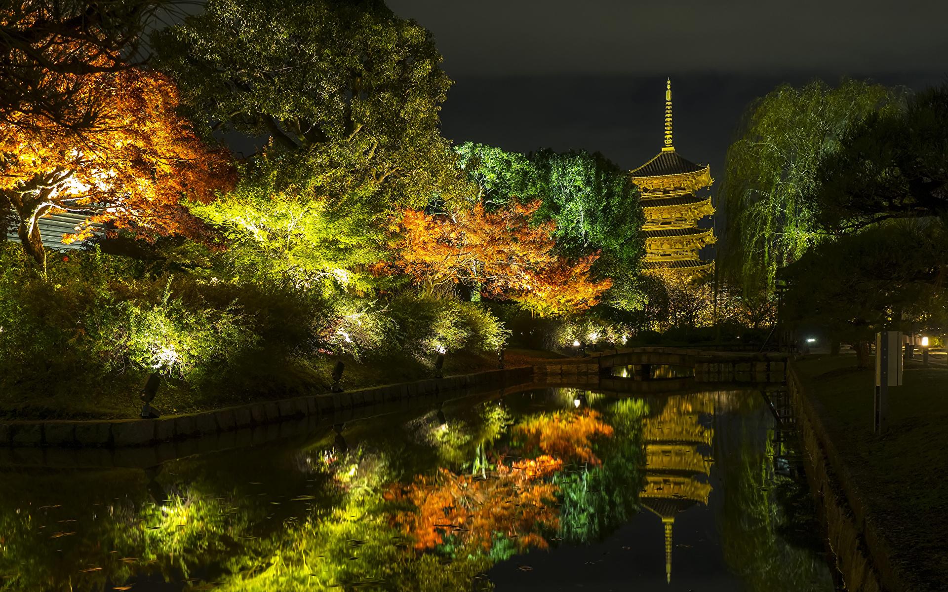 1920x1200、日本、京都市、秋、公園、池、木、夜、街灯、自然