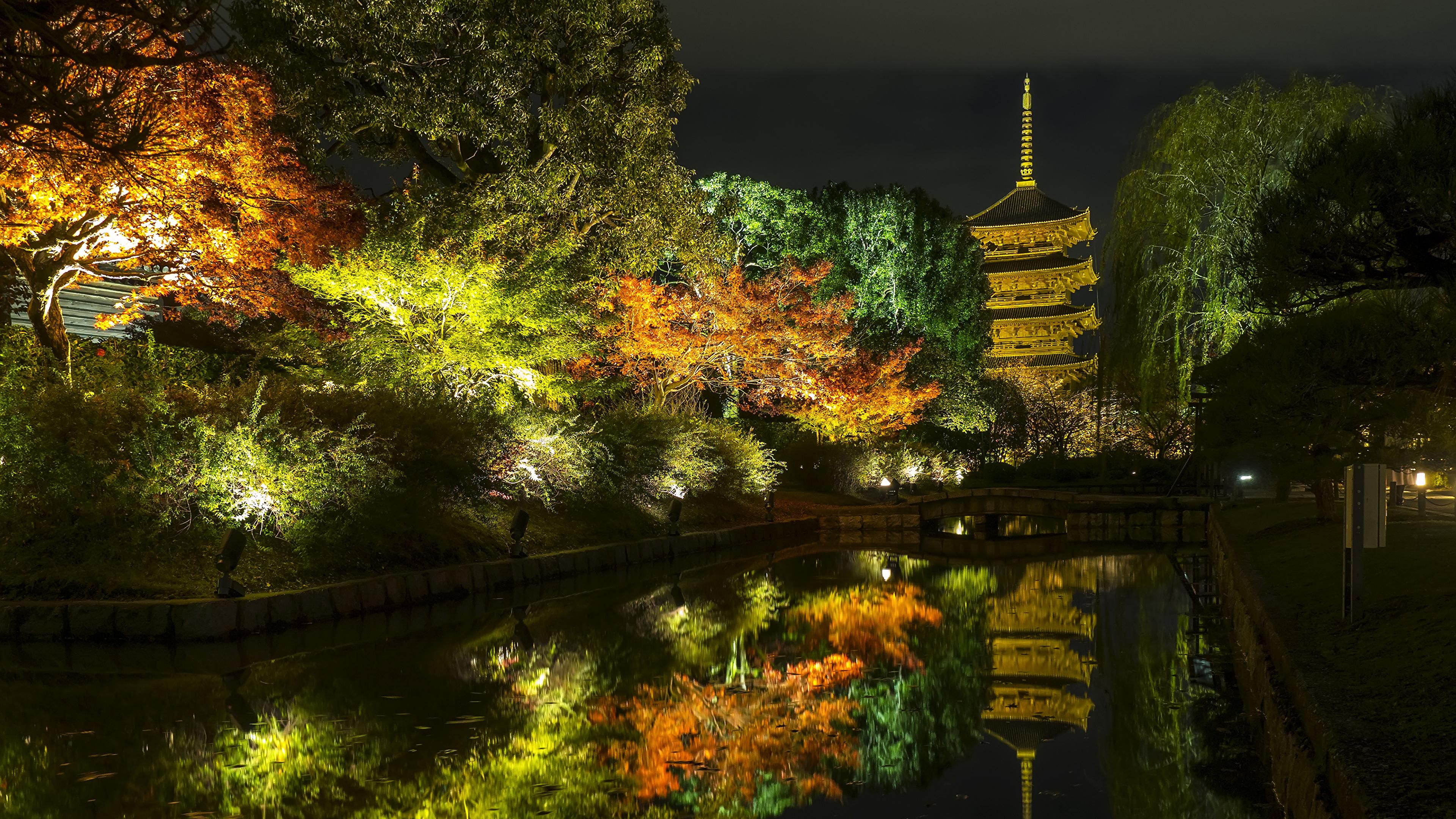 3840x2160、日本、京都市、秋、公園、池、木、夜、街灯、自然