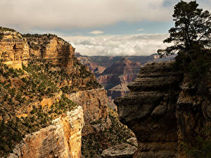 Fotos USA Grand Canyon Park Park Gebirge Canyons Natur