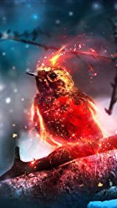 Hintergrundbilder Vögel Magische Tiere Ast Fantasy