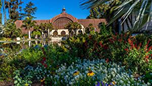 Fotos Vereinigte Staaten Park Teich Haus San Diego Strauch Balboa Park Natur