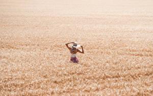 Hintergrundbilder Felder Weizen Der Hut Blond Mädchen junge Frauen