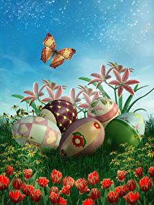 Hintergrundbilder Ostern Feiertage Lilien Tulpen Schmetterlinge Ei Design Blumen