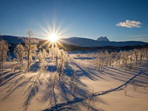Hintergrundbilder Landschaftsfotografie Sonnenaufgänge und Sonnenuntergänge Winter Schnee Sonne Bäume Natur