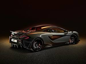 Bilder McLaren Seitlich Graues Metallisch Coupe 2019, 600LT, sports auto