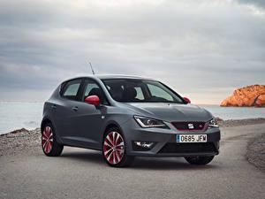 Hintergrundbilder Seat Graue 2015 Ibiza Autos