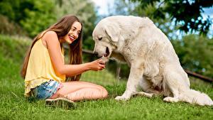 Hintergrundbilder Hunde Braune Haare Lächeln Sitzend Retriever Mädchens Tiere