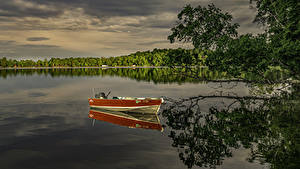 Images USA Rivers Boats Branches Reflection Minnesota Nature
