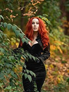 Image Georgiy Dyakov Branches Dress Redhead girl Decollete Staring Blurred background young woman
