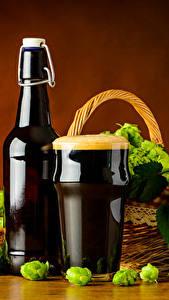 Fotos Bier Echter Hopfen Flasche Trinkglas Schaum Lebensmittel