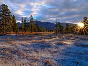 Fotos Winter Sonnenaufgänge und Sonnenuntergänge Gebirge Bäume Gras Sonne