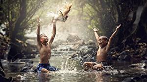 Bilder Asiatische Vögel Jungen Sitzend 2 Wasser spritzt Kinder