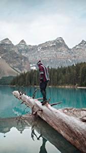 Bilder Kanada See Berg Park Banff Baumstamm Reisender Moraine Lake, Alberta