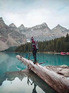 Bilder Kanada See Berg Park Banff Baumstamm Reisender Moraine Lake, Alberta Natur
