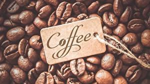Bilder Kaffee Großansicht Getreide