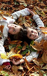 Picture Autumn Little girls Two Foliage Smile child
