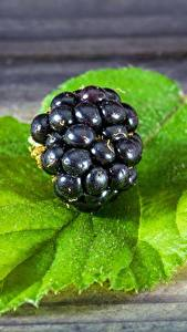 Wallpaper Blackberry Closeup Berry Leaf Food