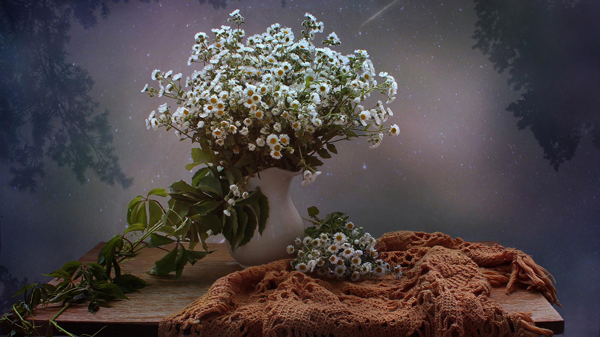 Image Bouquets Flowers Matricaria Vase Many Still Life 1920x1080