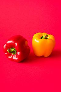 Bilder Paprika Rot Gelb Zwei 2 das Essen