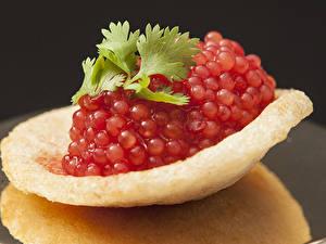 Fotos Meeresfrüchte Kaviar Rot Kartoffelchips