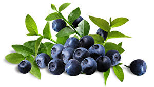 Wallpapers Blueberries Closeup Berry White background Branches Food
