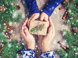 Fotos Neujahr Zimt Hand Geschenke Ast Zapfen Schnee