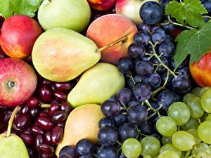 Fotos Obst Weintraube Äpfel Birnen
