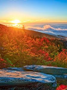 Bilder Landschaftsfotografie USA Küste Morgendämmerung und Sonnenuntergang Herbst Steine Wolke North Carolina Natur