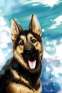 Bilder Hunde Gezeichnet Deutscher Schäferhund Zunge Shepherd
