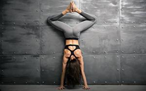 Hintergrundbilder Fitness Wand Braune Haare Trainieren Hand Bein Rücken Mädchens Sport